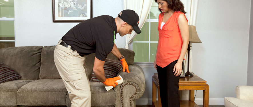 Brookville, PA carpet upholstery cleaning